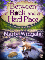 Review of Between a Rock and a Hard Place