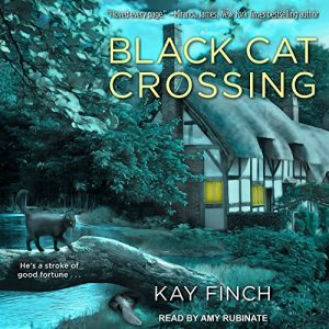 Audiobook review of Black Cat Crossing