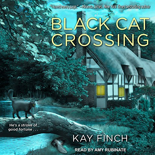 Black Cat Crossing by Kay Finch